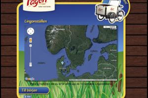 web-pagen-sommar2013-02